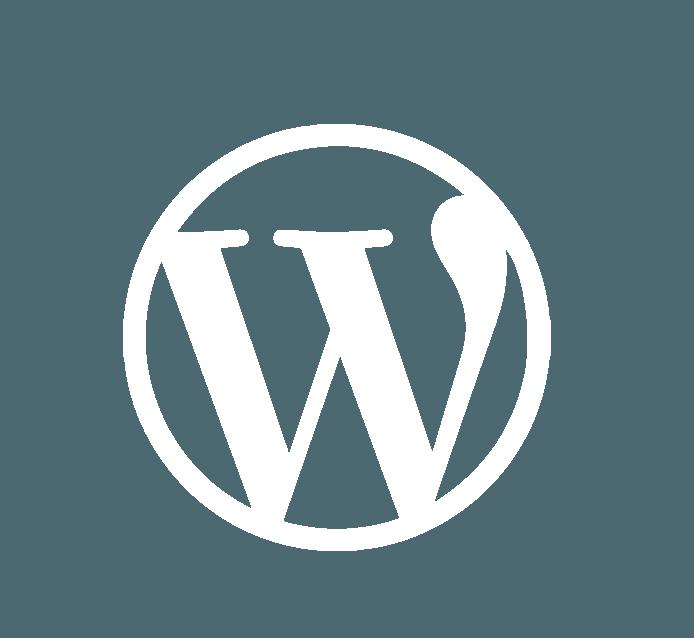 בניית אתרים בחיפה - אייקון של וורדפרס